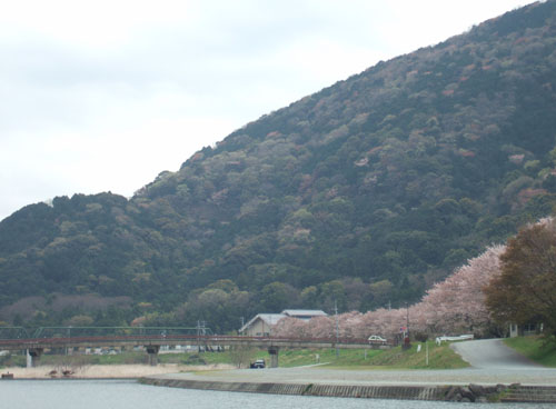 isuzugawa5