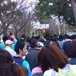 日間賀島さわやかジョギング大会
