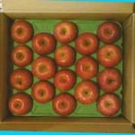 タケダのリンゴ