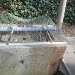 漁村の八幡神社